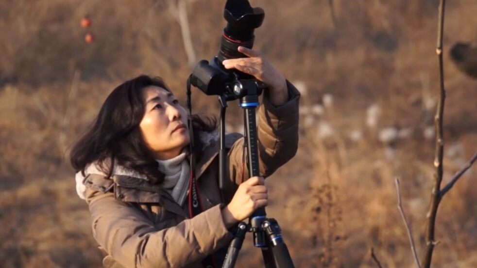 楊華雨 曠野之歌 紀錄片 大內之光 線上放映 胥媽媽